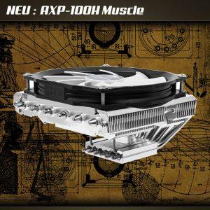 axp 100h muscle