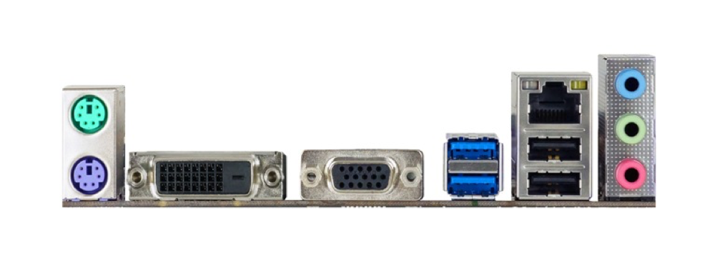 BIOSTAR H110MDE Rear Ports